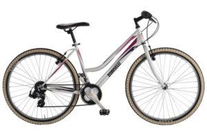 B004LBicicletta Doniselli Mountain bike Brio 99 18 v.
