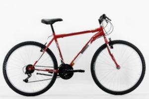 B004M Bicicletta Doniselli Mountain bike Brio 99