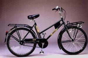 BT48-26-Bicicletta-Doniselli--Trasporto-26(1)