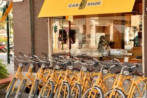 Doniselli Olanda per Car Shoe